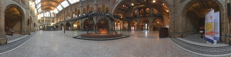 5 Natural History Museum