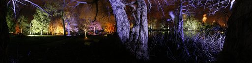 4 Syon Park Enchanted Woodland